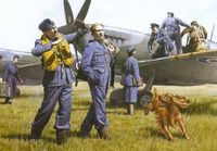 WWII RAF Pilots and Ground Personnel 39-45